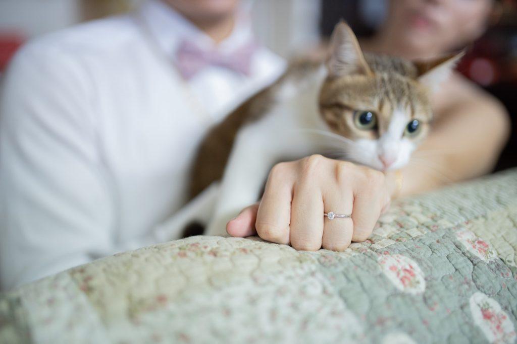 台中婚錄推薦張西米,埔里自宅文定儀式61